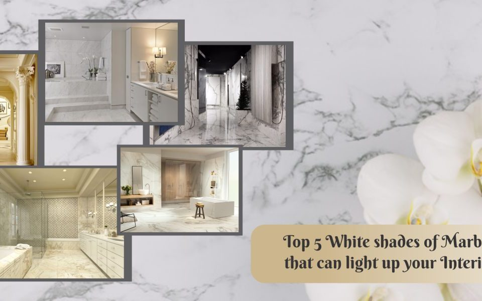 Top 5 White shades of Marble that can light up your Interior